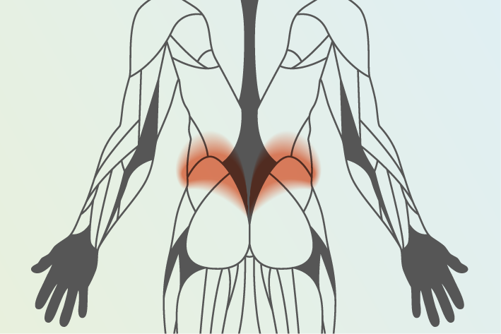 diagram of human body showing area of low back pain